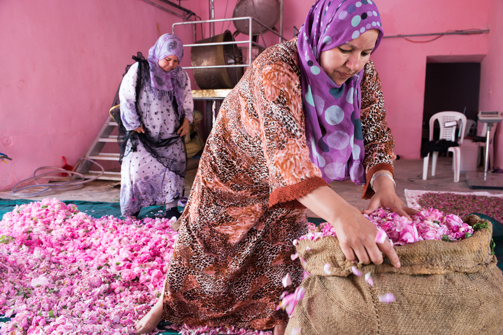 valley of roses morocco women empowerment