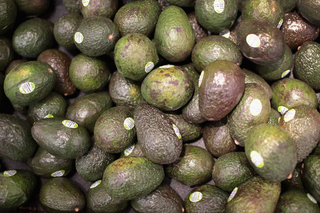 How demand for avocado is causing Chile's water to run out