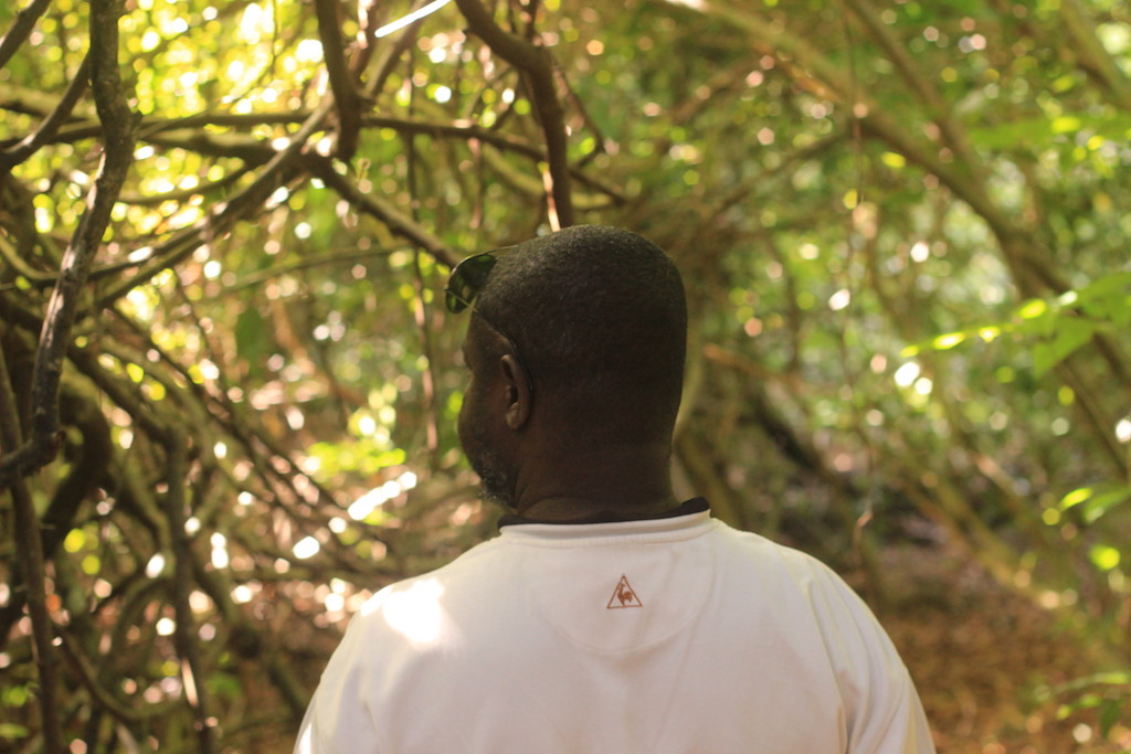 Walking through the forest with Abusuleiman; a community guide © Sarine Arslanian