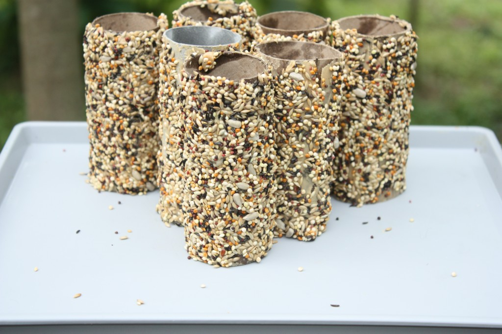 Toilet-Paper-Roll-Crafts-Bird-Feeder-25-1024x682