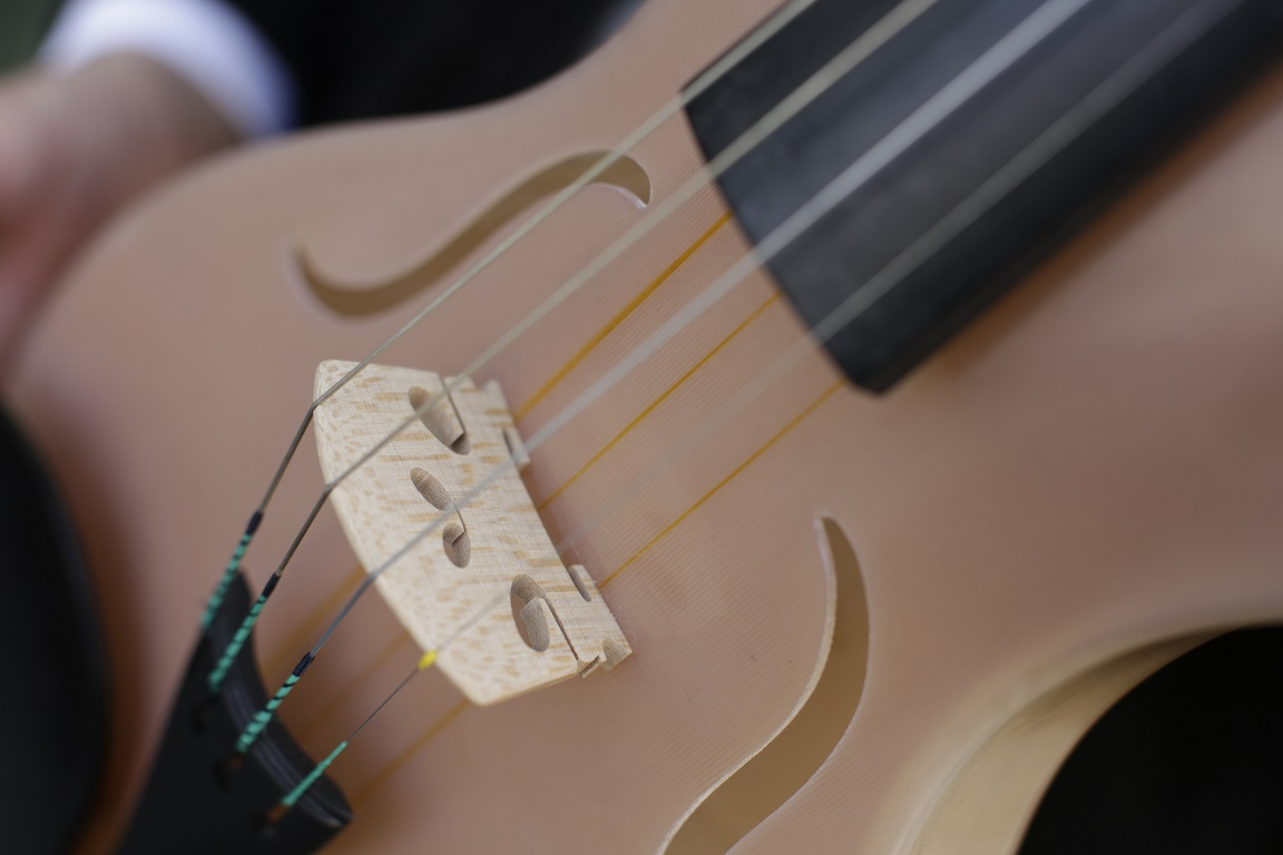 The spider silk violin created by Luca Alessandrini