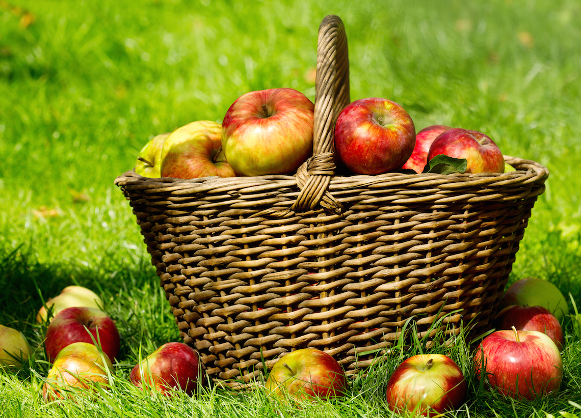 fresh apples basket