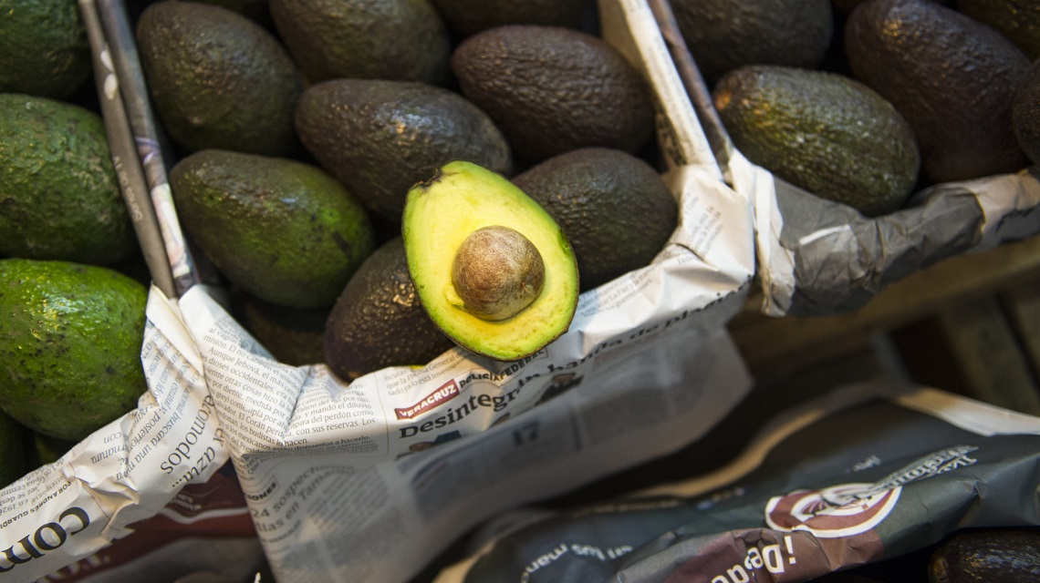 Avocado How Hunger For Guacamole Is Causing Deforestation