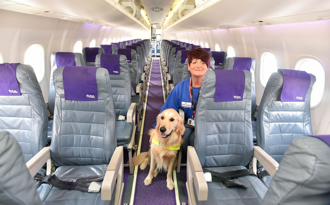 Dogs will fly in the cabin on delta planes just like all for Airlines that allow dogs in cabin