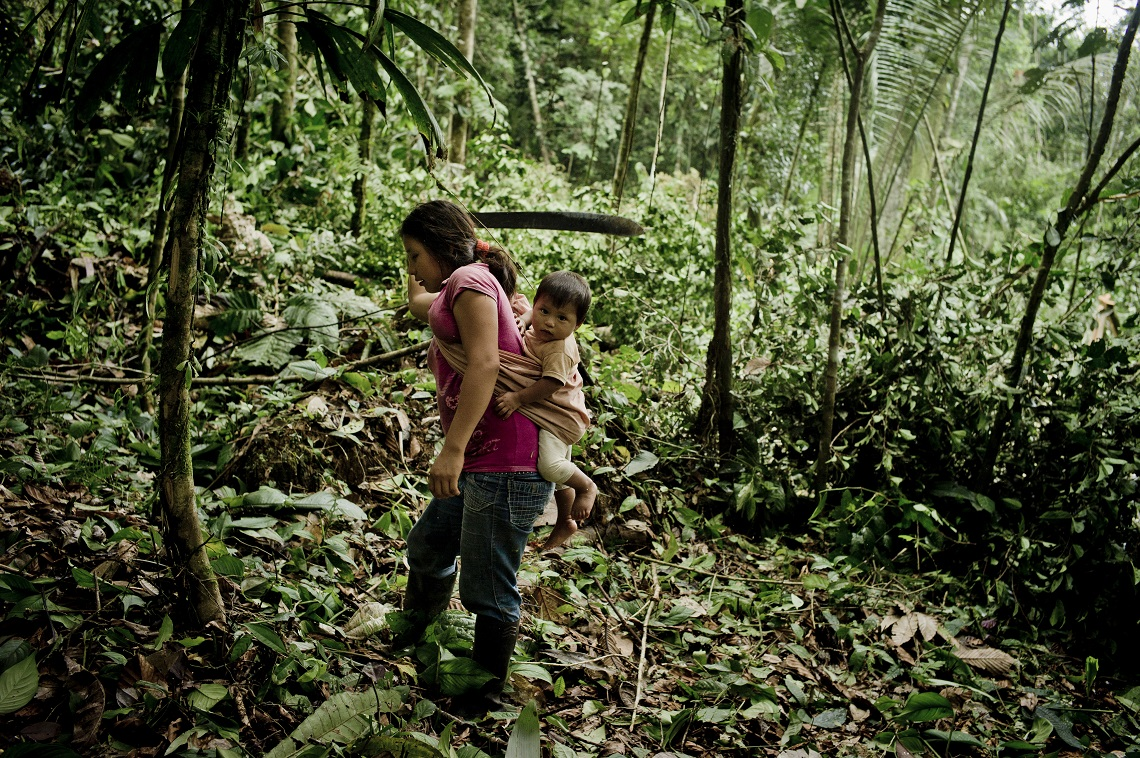A Kiwcha villager cuts down small trees using a machete as her husband uses a chainsaw to clear an area to sow corn to feed his animals, near the Napo River in Orellana, Ecuador.  March 2013. Photo/Tomas Munita