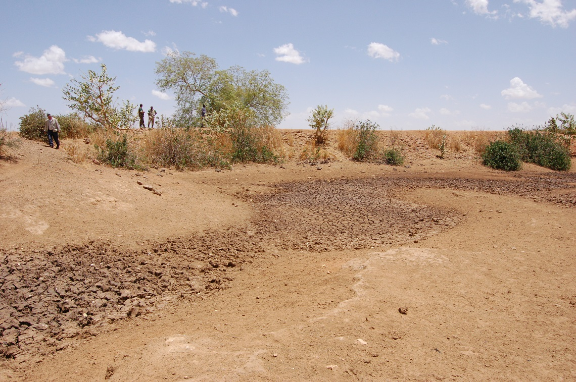desertification human activities
