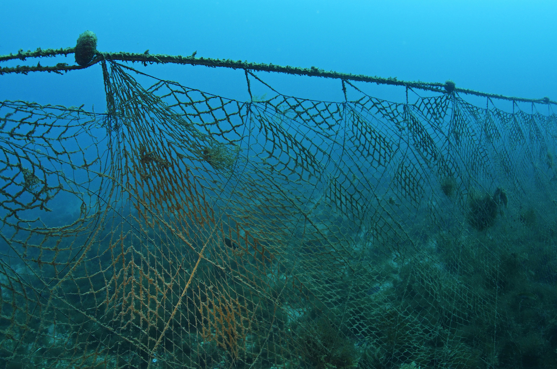 New biodegradable nets could contribute to solving ghost for Fish nets near me