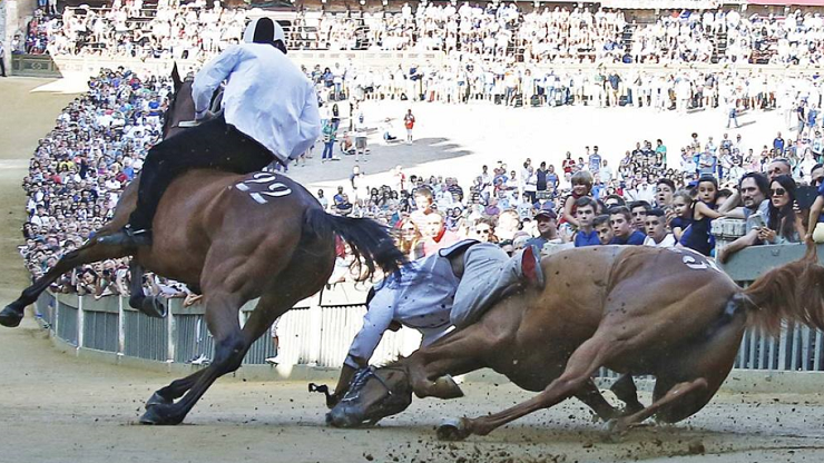siena  the palio of horse death is back