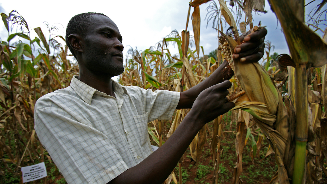 The Drought In Zambia Is Causing Starvation A Power Crisis